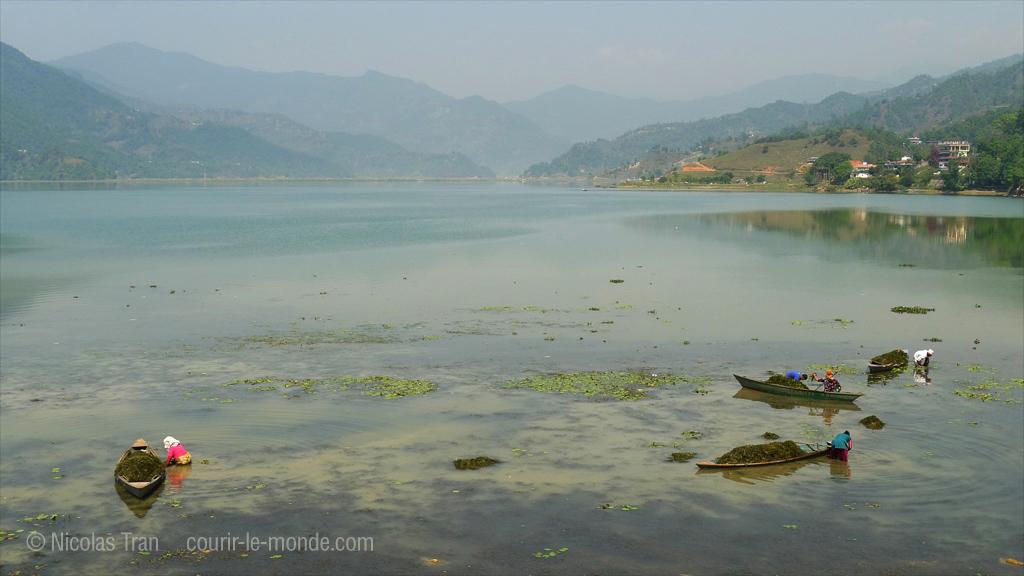 Pokhara, lac Phewa, Népal