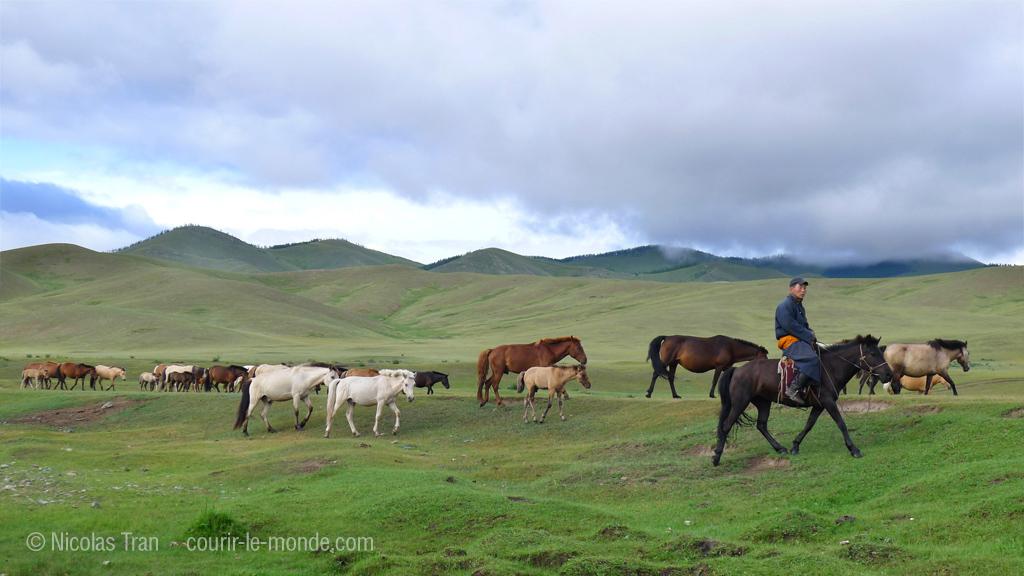 Parc national de Terlj, Mongolie