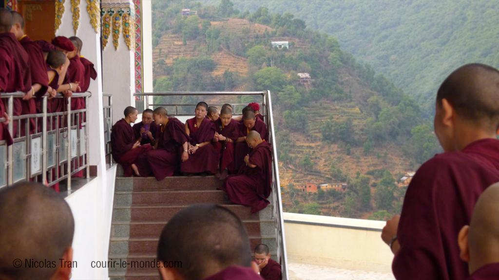 Monastère Druk Amitabha Mountain, Népal